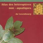 heteropteres