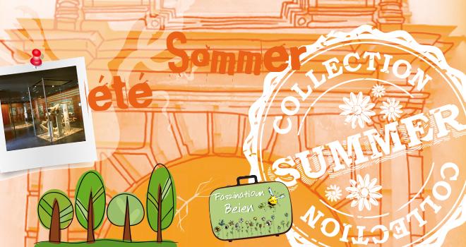 Summer am natur musée