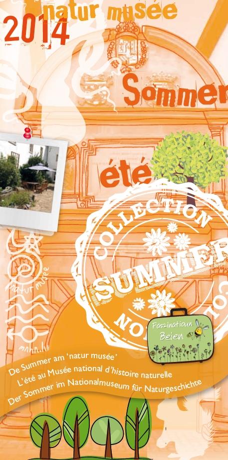 Summerprogramm