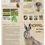 Hoppel