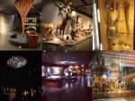 Salles natur musée_www