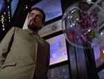 orchids_moonraker_s