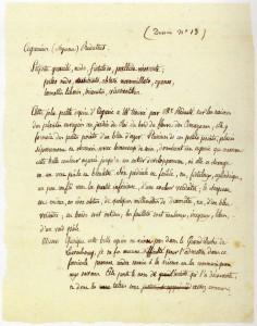 Agaricus reduteus_Texte
