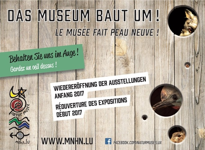museum baut um